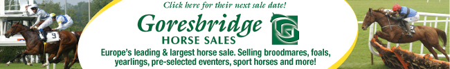 Goresbridge Horse Sales, Ireland