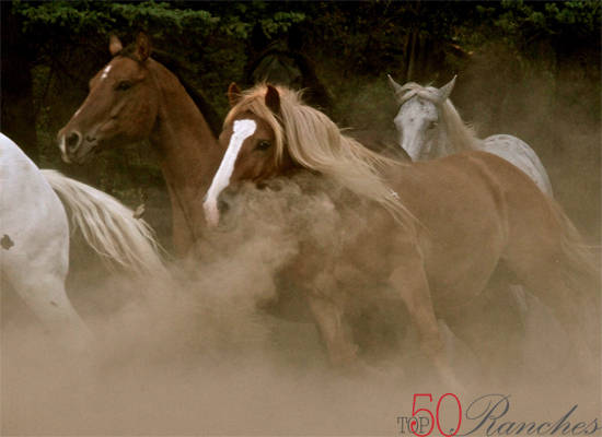 Lone Mountain Ranch Exclusive Print Top50 Ranches