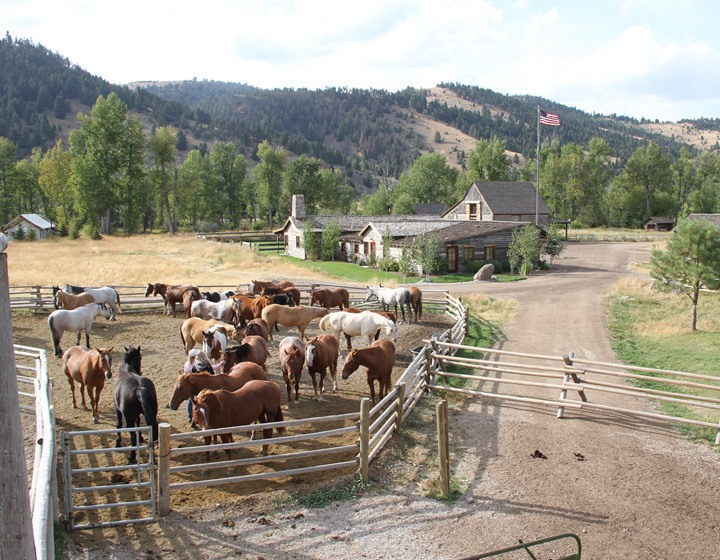 montana dude ranch, ranch at rock creek