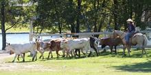 Malibu Dude Ranch Pennsylvania