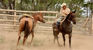 Zapata Ranch Horsemanship Clinics