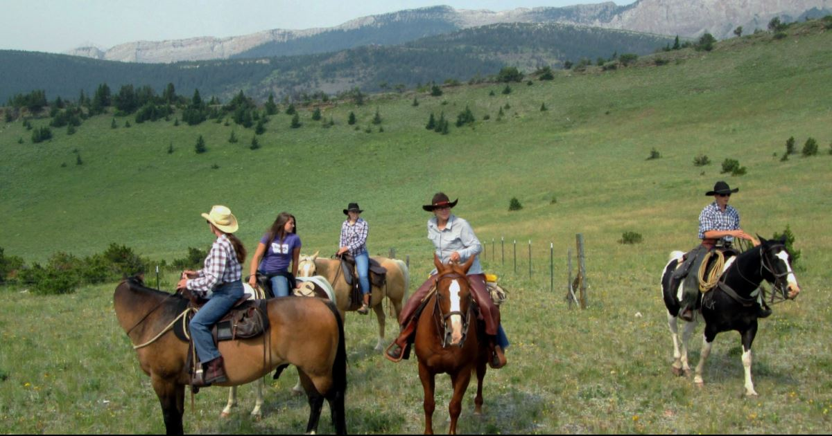 American Ranch Holidays What Makes Them Special Top50
