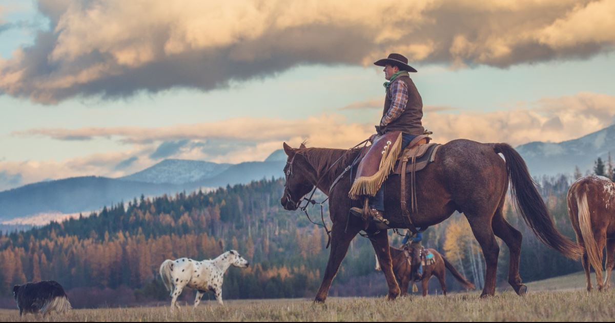 Idaho Ranches For Sale >> Western Pleasure Guest Ranch, Idaho, USA - Guest Ranch vacation | Top50 Ranches